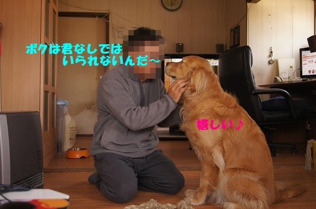 DSC04362_1.jpg