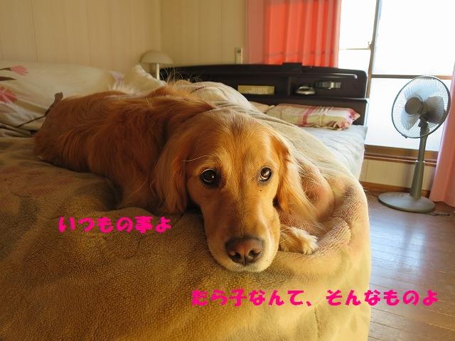 IMG_0688.jpg
