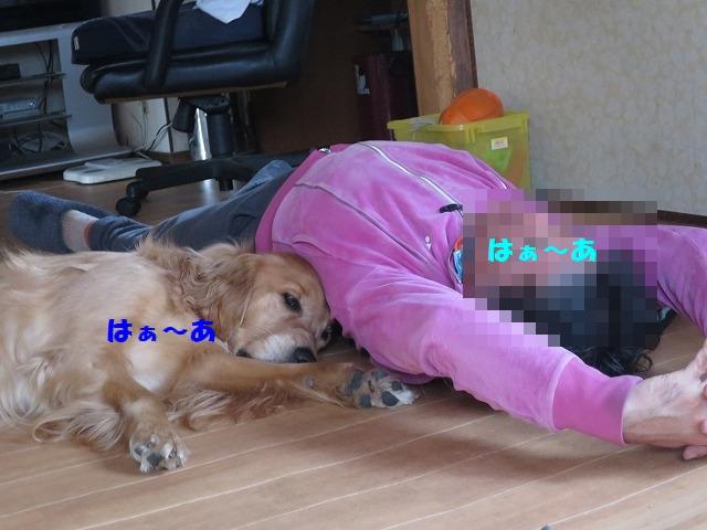 IMG_2260.jpg