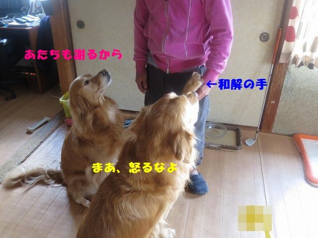 IMG_2360.jpg