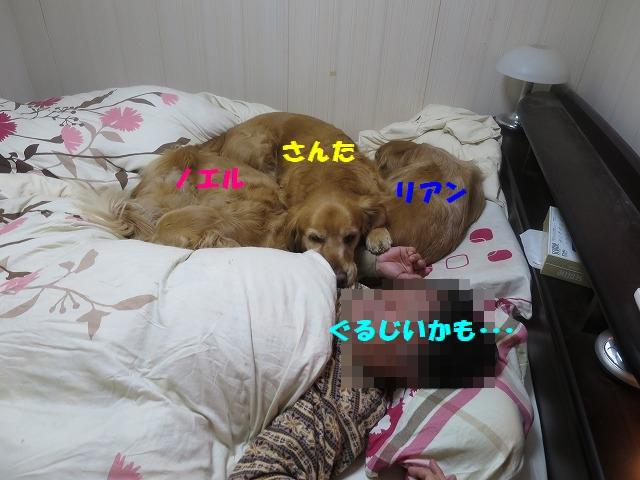 IMG_2457.jpg