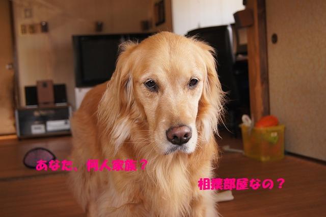 IMG_2616_1.jpg