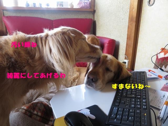 IMG_3002.jpg
