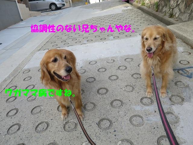 IMG_3476.jpg