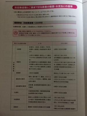 冊子(9)