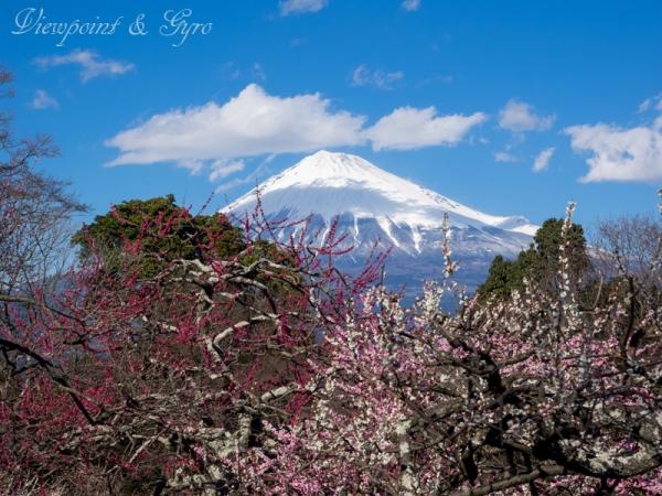 岩本山 I