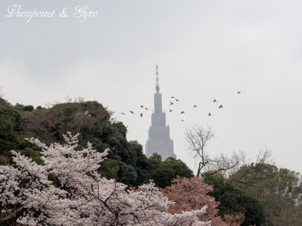 新宿御苑 H
