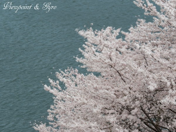城山湖 G