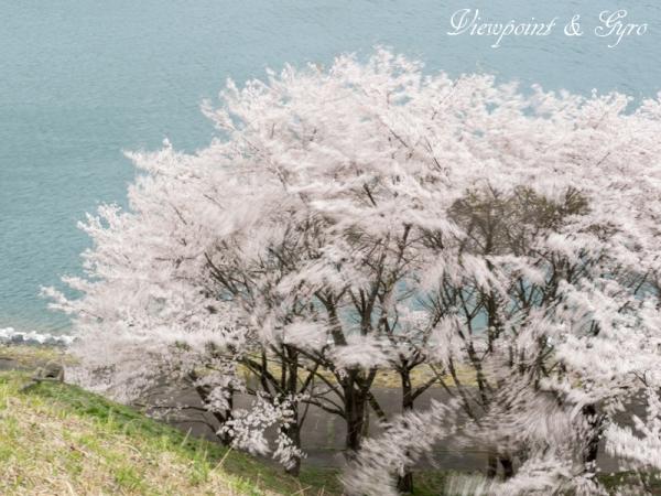 城山湖 H