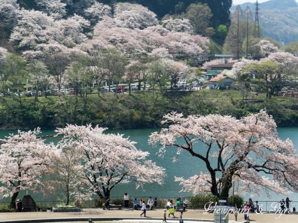 津久井湖 B