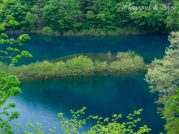 奥四万湖の浮島 A