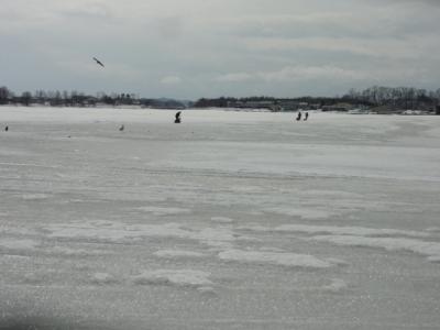 阿寒湖 能取湖 030