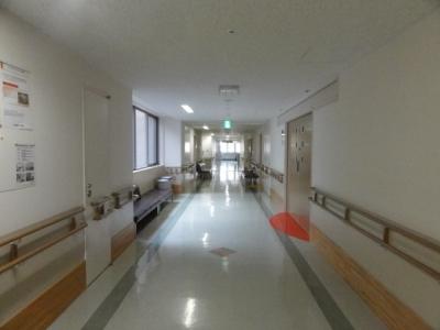 入院2015 3月23~4月7日 016