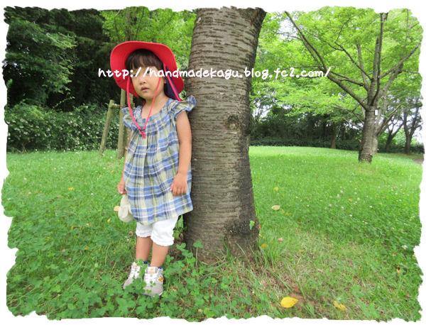 IMG_4000_20150712141537c29.jpg