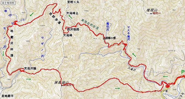 赤沢カツラ(2)