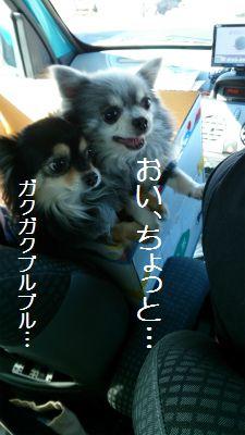 DSC_2253.jpg
