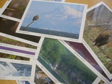 旅行先でポストカード購入2015-2