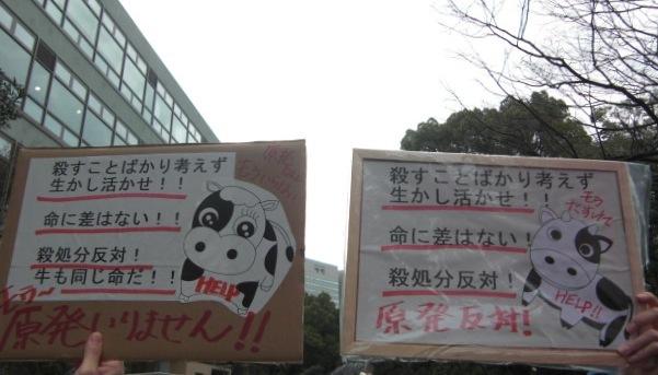 Momoko-Hime's Blog 動物救援隊 外交官 ももこひめ