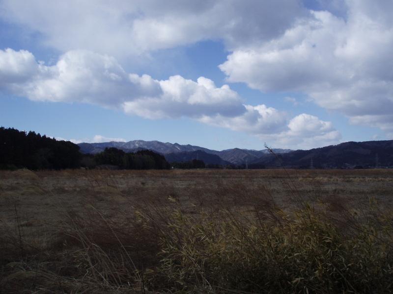 置き去りにされた小さな命~福島第一原発20km圏内 警戒区域から~