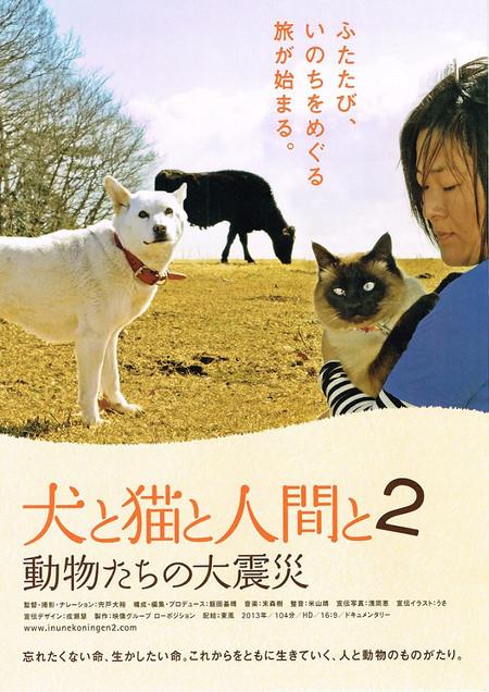 動物救援隊 東京福島茨城方面部隊 nekoneko