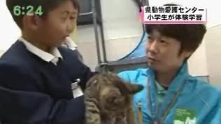 動物救援隊 外交官 ももこひめ Momoko-Hime's Blog