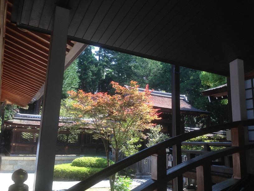 武田神社 (9)1
