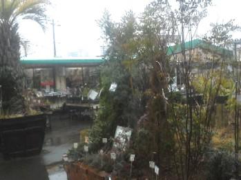 2・26雨の店内