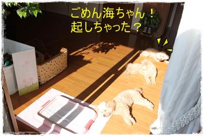 2015_0217_110840-IMG_2512.jpg