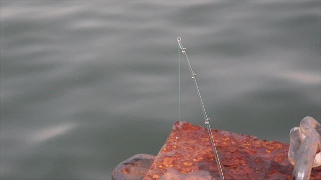 釣れるかな ^^