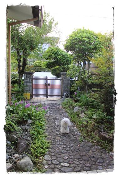 玄関から門まで♪