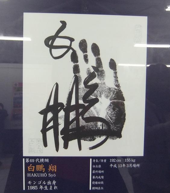 s-ハクホウテガタ - コピー