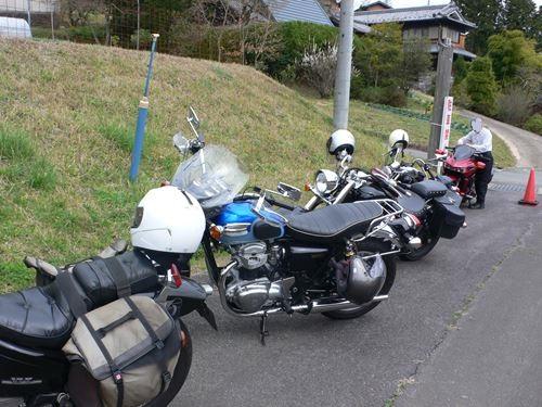 matabeisakura009_R.jpg