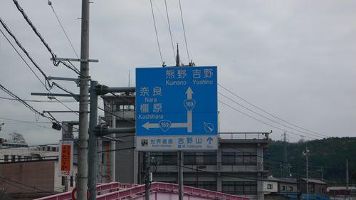 matabeisakura010_R.jpg