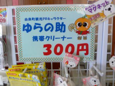 sirasaki270207008_R.jpg