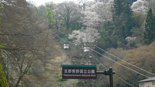 yosinoyama2015017_R.jpg