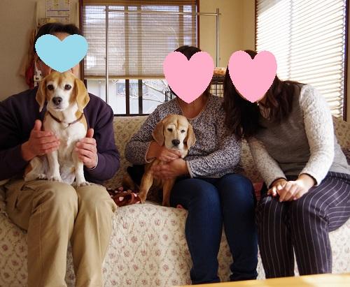 大福ちゃん家族写真