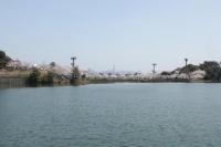 白水大池公園C