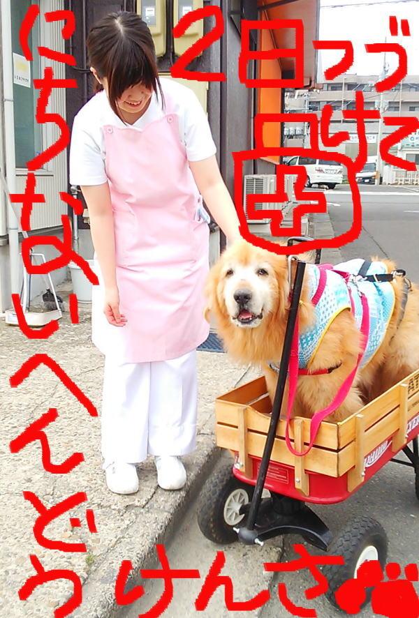 2015年23日(火)日内変動