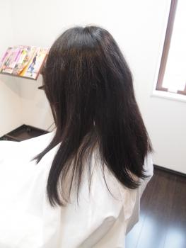 P4191053.jpg