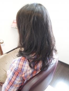 P4241093.jpg