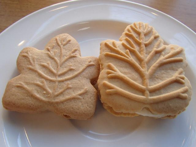 レクラークメープルクッキー (4)
