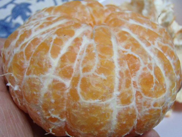 柑橘大好き (3)