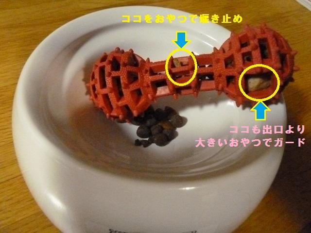 150425ポン太夕食①