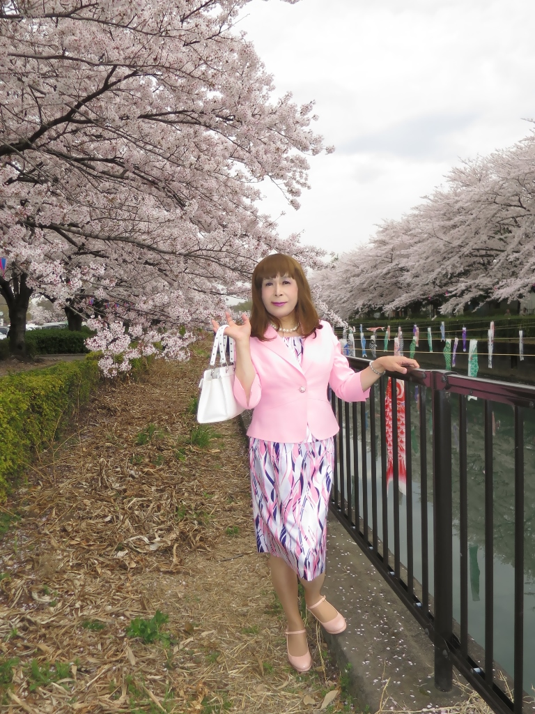 ピンクスーツ桜A(1)