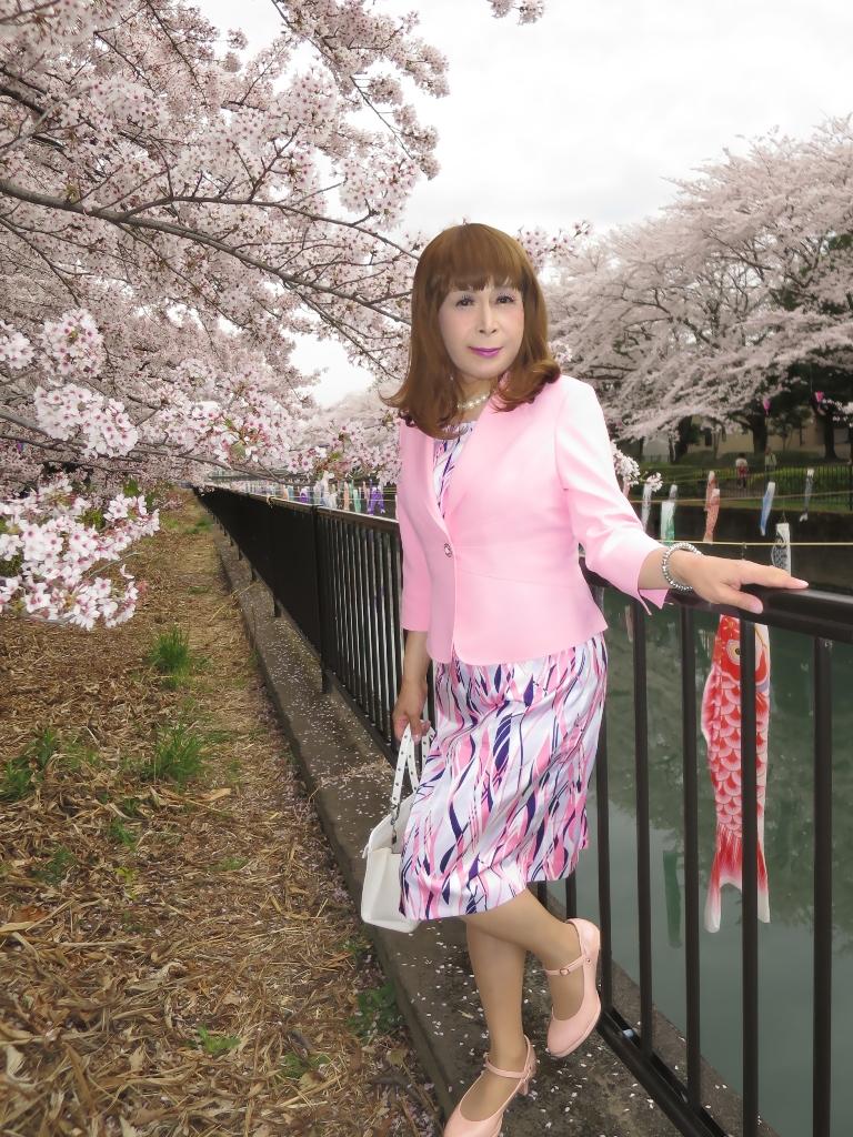 ピンクスーツ桜A(4)