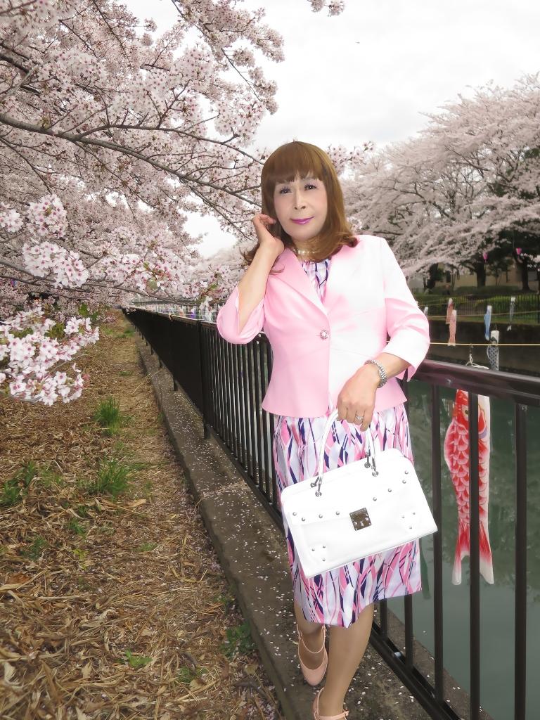 ピンクスーツ桜A(5)