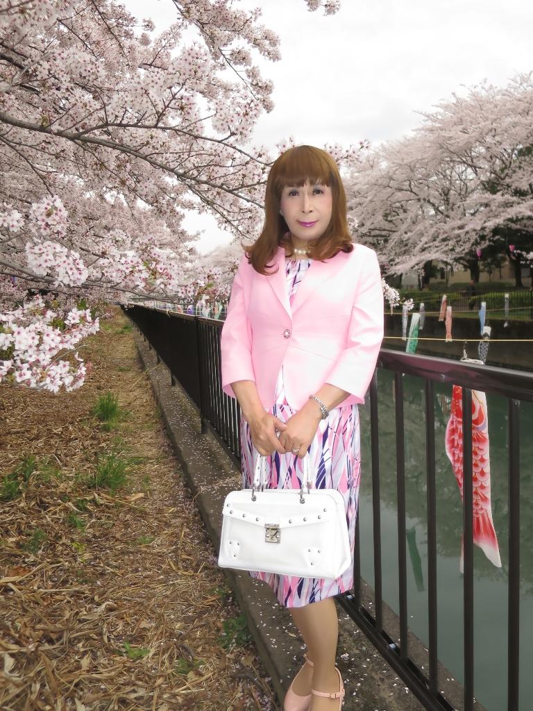 ピンクスーツ桜A(6)
