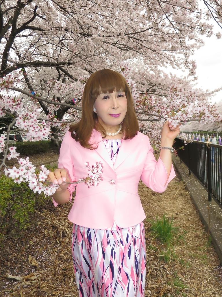 ピンクスーツ桜A(7)