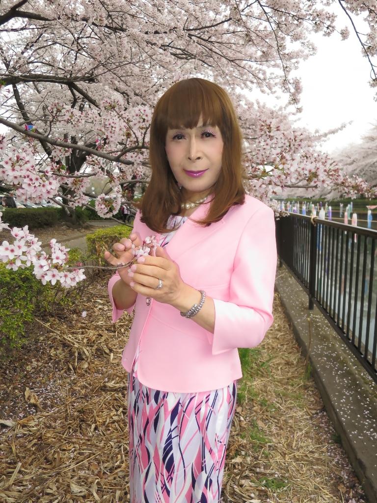 ピンクスーツ桜A(9)
