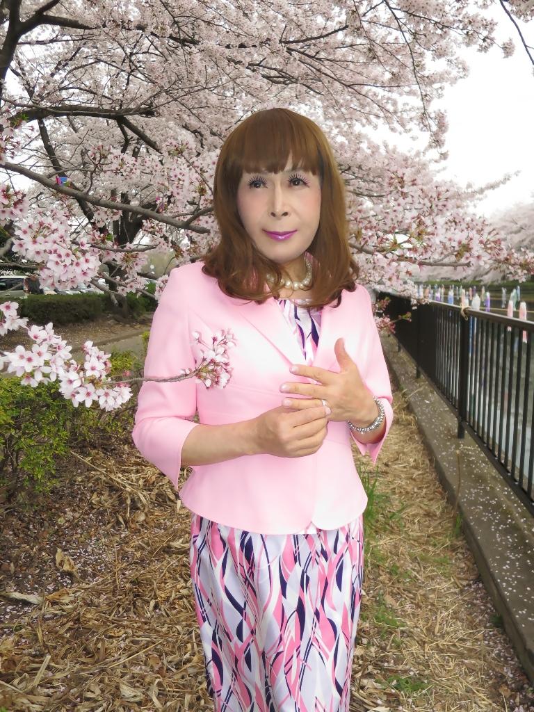 ピンクスーツ桜A(10)